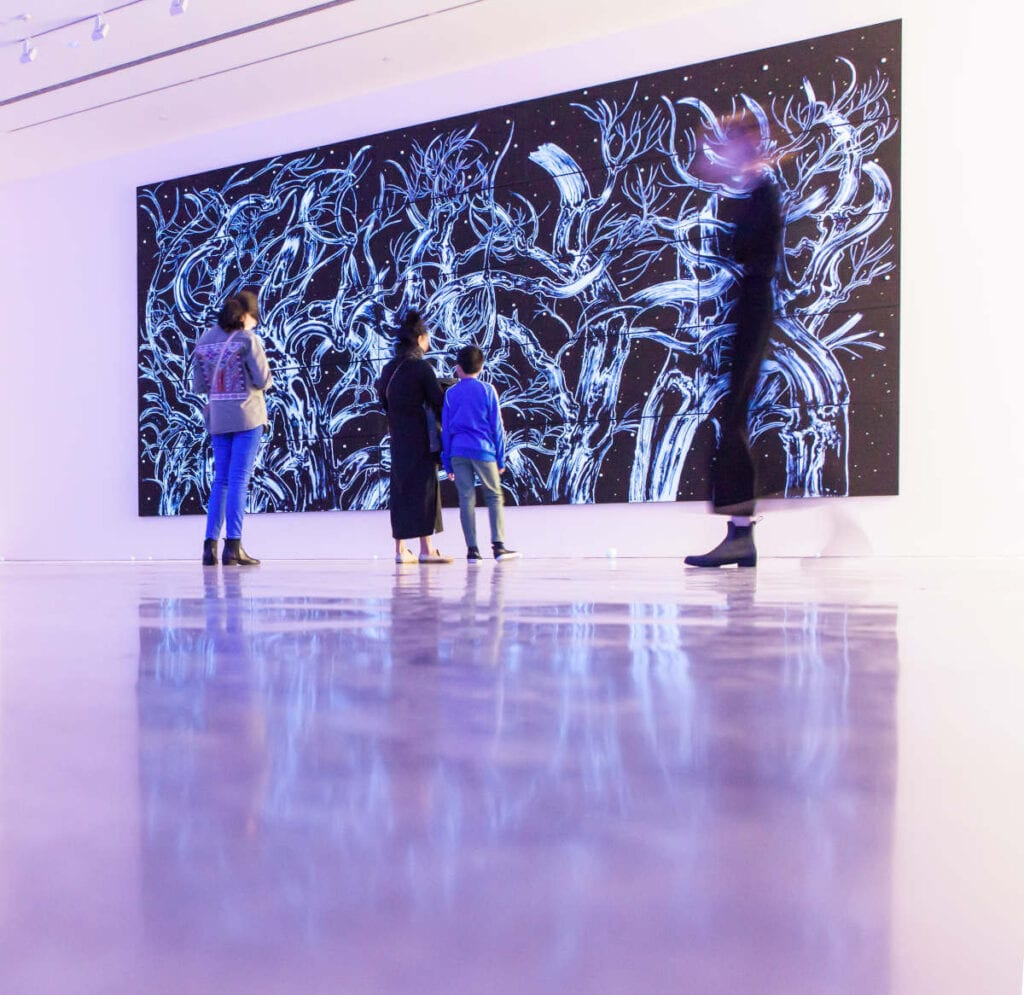 Museum of Contemporary Arm - Covid-safe things to do in Sydney